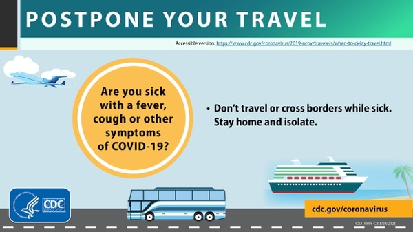 A CDC infographic about postponing travel and staying safe during the COVID-19 pandemic. (Centers for Disease Control and Prevention)