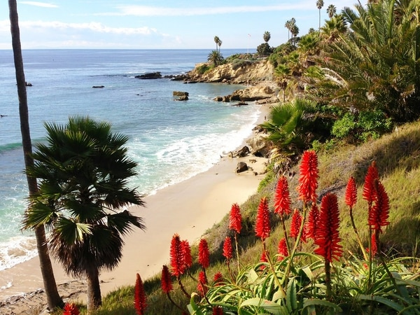 A little view from Shaw's Cove in Laguna Beach, Calf. (Photo courtesy of Creative Commons)