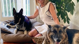 Barking news: Political pets are relevant again