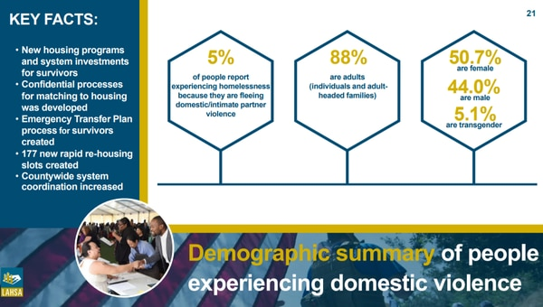 A graphic depicting demographics of people experiencing domestic violence. (Courtesy of Los Angeles Homeless Services Authority, 2019).