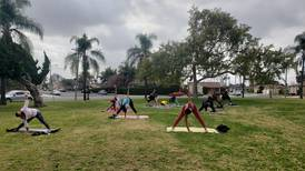 The Tree Yoga Cooperative celebrates Black History Month with 'Decolonization of History Module'